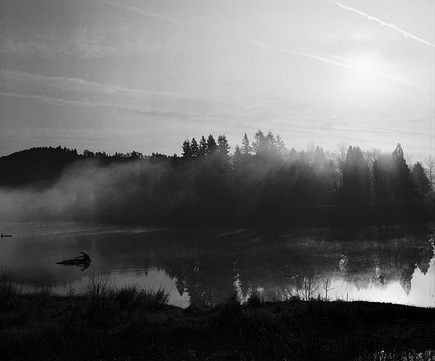 http://contrailscience.com/skitch/Misty_sunrise_%7C_Flickr_-_Photo_Sharing%21-20101107-090038.jpg