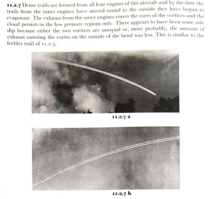 This 1972 book, Clouds of the World, discusses the formation of Hybrid contrails.  But does not give them a particular name.