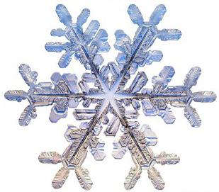 snowflakecvr2.jpg